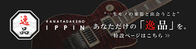#ANATADAKENO 『 逸品 - IPPIN - 』【イシバシ楽器】