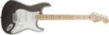 Fender USA / American Artist Series Eric Clapton Signature Stratocaster Pewter 商品画像