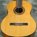 Cordoba / C5 【Iberia Series】 コルドバ クラシックギター ガットギター 入門 初心者 C-5 ナイロンストリングス 商品画像