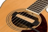 Fender / Cypress Single-Coil Acoustic Soundhole Pickup Natural フェンダー 【アコギ用ピックアップ】 商品画像