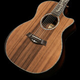 Taylor / PS14ce LTD V-Class Sinker Redwood/Macassar Ebony【S/N 1209090146】【渋谷店】 商品画像