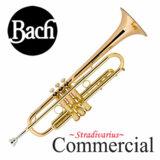 Bach / COMMERCIAL バック LT1901B CL コマーシャル ラッカー仕上げ B♭トランペット【お取り寄せ】 商品画像