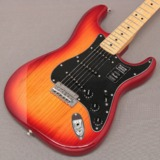 Fender / Limited Edition Player Stratocaster Ash Aged Cherry Burst Maple 商品画像