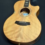 Cole Clark / Angel Series CCAN3EC-BB Bunya Top with Australian Blackwood Side and Back 商品画像