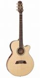 Takamine / TSP138C N タカミネ エレアコ アコースティックギター アコギ  商品画像