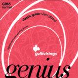 gallistrings / Genius GR65 Normal Tension 29-44 アコギ弦 商品画像