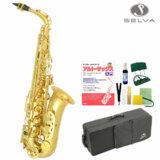 SELVA / 初心者向けアルトサックス入門セット Alto Sax SAS-100 セルバ 《CD付教則本&曲集セット》【管楽器初心者】 商品画像