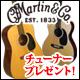 Martinアコースティックギター