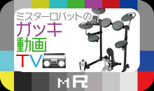 ミスターロバットのガッキ動画TV