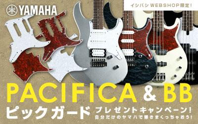 【YAMAHA】 PACIFICA&BB ピックガードプレゼントキャンペーン!